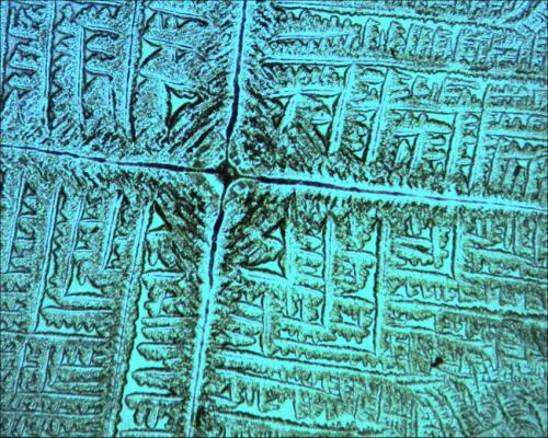 This image shows dried biosaline patterns formed by the interaction of Escherichia coli cells with common salt. Credit: J. M. Gomez Gomez